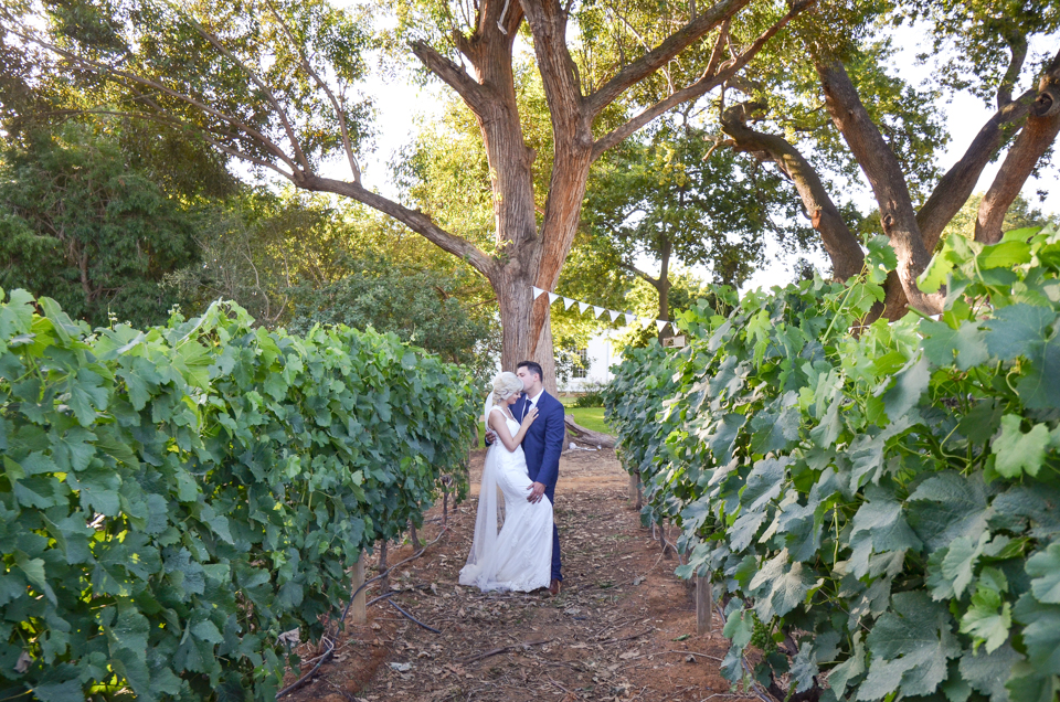 Wedding photographer Cpae Town - Zandri du Preez Photography (552)