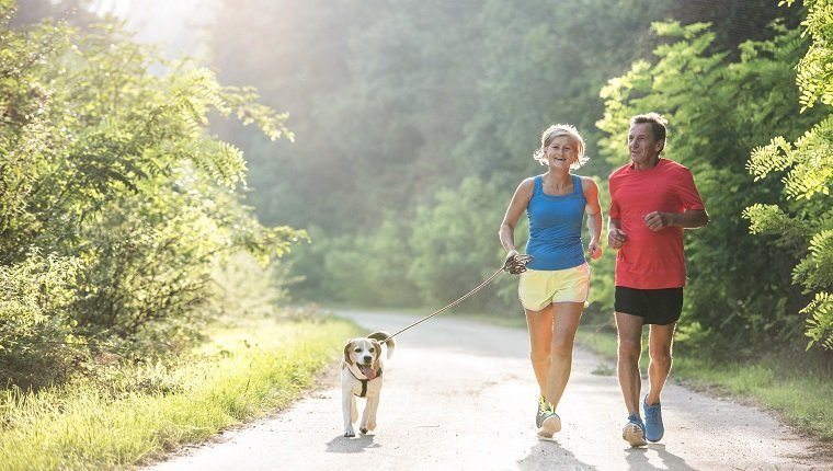two people jogging with dog - how do they know how fat they go