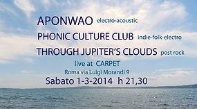 locandina concerto 1-3-14.jpg