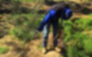 AgChem Spraying Pest Weeds
