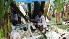 Lavorazione del falso banano