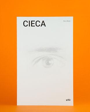 Marco Marini - Cieca catalogo mostra - f