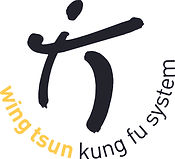 Logo_kungFusystem.jpg