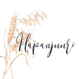 Logo hapanjuuri.fi.png
