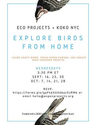 explore-birds-from-home-2020-fall-schedu