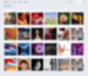 network galleries - resized.png