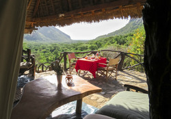 view from safari tent