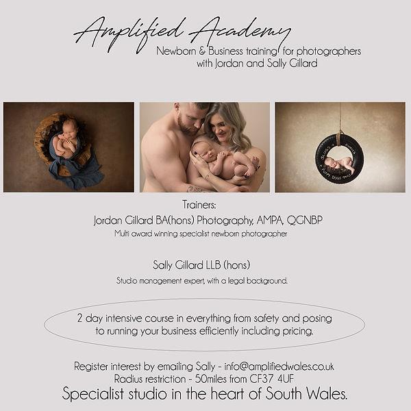 Amplified Academy small.jpg