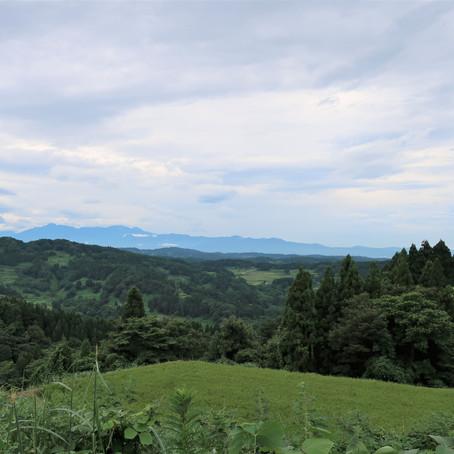 【体験イベント】稲刈り体験開催します!