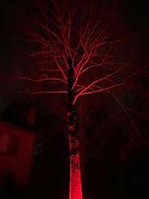 RGB RED.jpg
