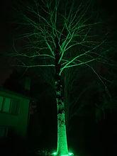 RGB GREEN.jpg