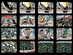 Storyboard Frames for Monsanto