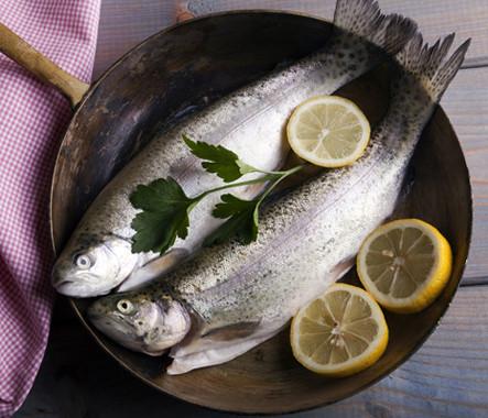 Fischgericht.jpg
