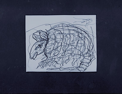 Armadillo Willy Pen Drawing