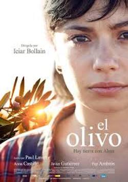 El Olivo - Spain 2015