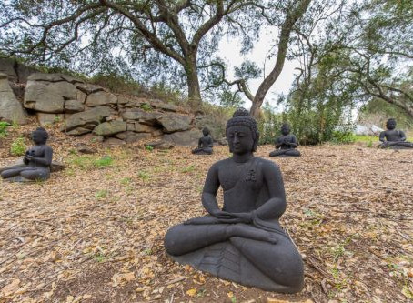 Day of Mindfulness at Deer Park Monastery