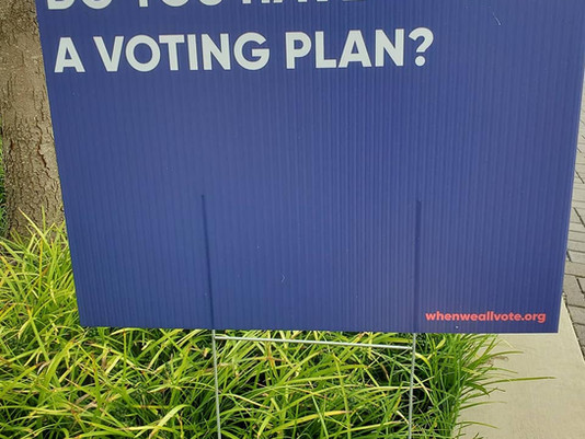 Do you have a plan to vote?