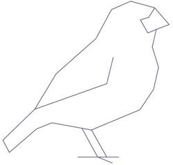 Darwin, evolutionäre Strategien und präzise Kommunikation