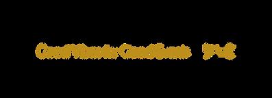 logo dj nabil tabyak noir et or.png