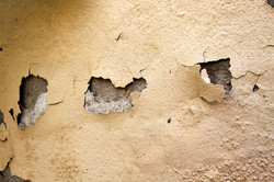 Rising damp issues? Contact us.