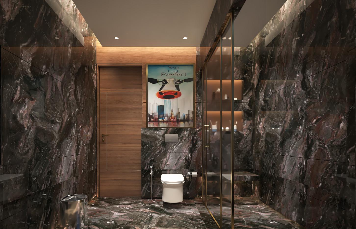 Toilet cam 14.jpg
