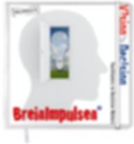 Breinboekje_notitieboek_12 x 12_visual v
