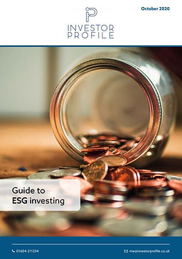 Investor-Profile-ESG-guide-Oct-2020.JPG