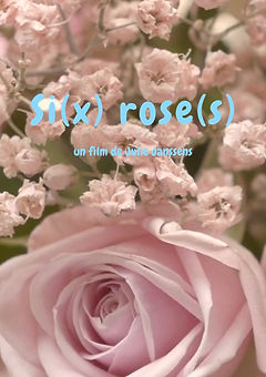 Si(x) rose(s).jpg