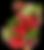 fruit-currant-branch-botanical-download-