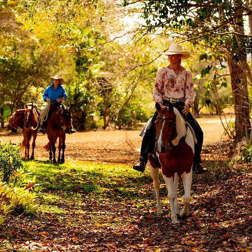Ride Proud  Trail Gen2 Bootleg Riding Pants