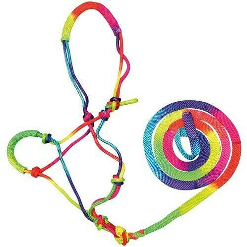 Bambino Rainbow Halter and Lead