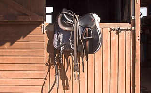 Horse riding tack over stable door.jpg