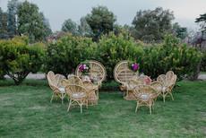 Peacocks chairs wedding hire