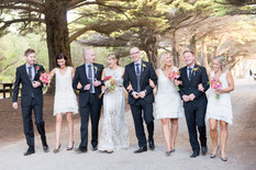 Emily and Liam wedding party.jpg