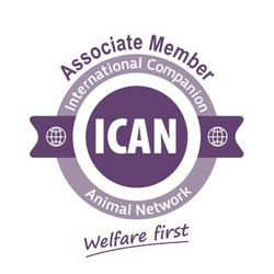ICAN Logo-Associate Badge 400 size (1)