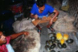 Kampf-gegen-Schildkröten-Handel-001.jpg
