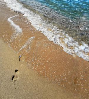 Make a step toward your dream!