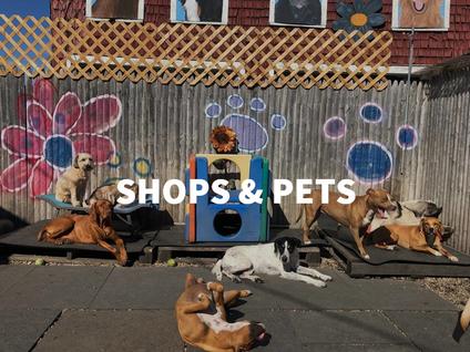 SHops & Pets4.png