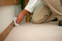 Carpet Cleaning
