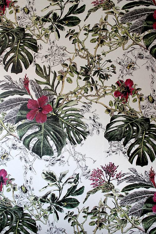 Sian Zeng - Summer Tropical Bloom on Paper