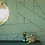 Custhom Green Wallpaper