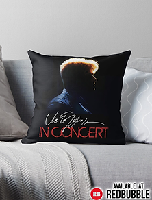 INCONCERTPILLOW.PNG