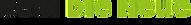 Logo Thurgauer Zeitung.png