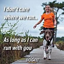 together - dogfit.jfif