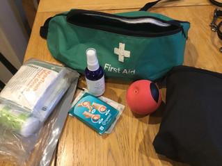 Runner's (& Canicrosser's) Emergency Kit
