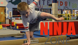 What Makes Ninja Zone So Special?