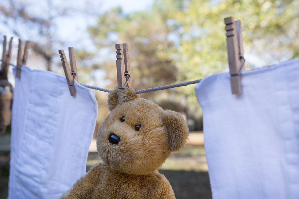 Heritage Clothespins on a clothesline