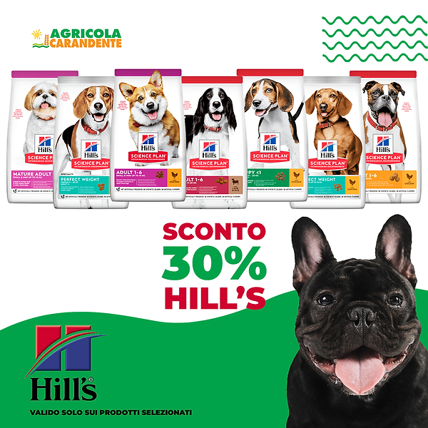 sconto-hill's-cane.png