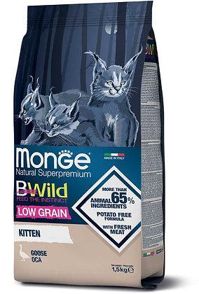 monge gatto secco bwild kitten oca 1.5Kg