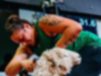 Pagan shearing at the GS.jpg